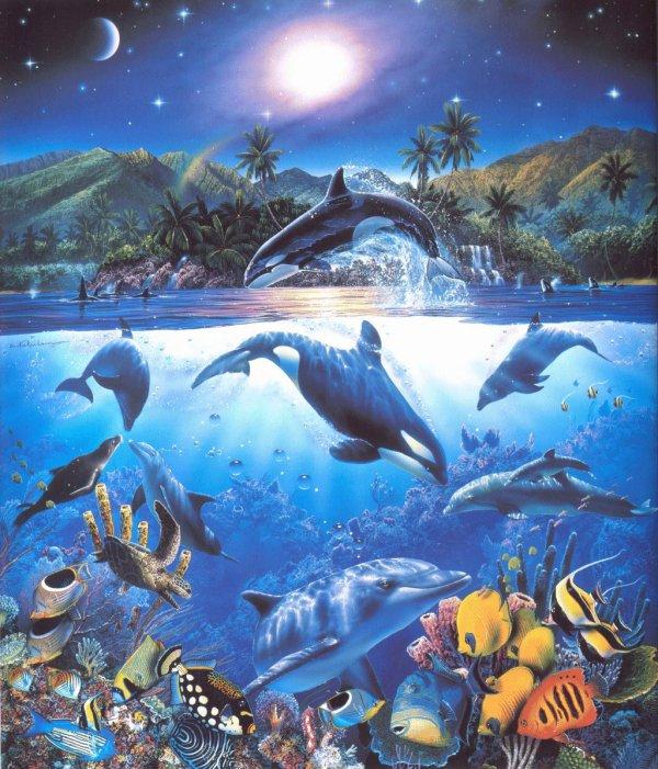 Merveille Aquatique !