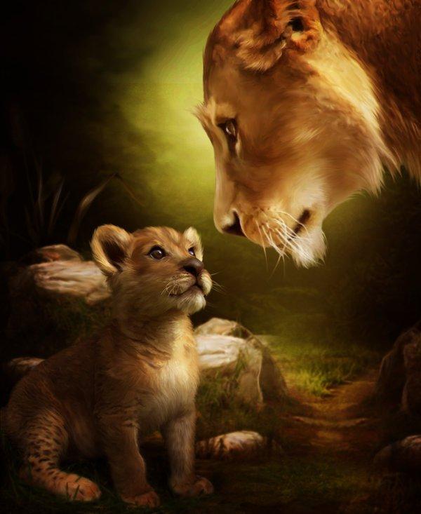 Simba et sa Maman