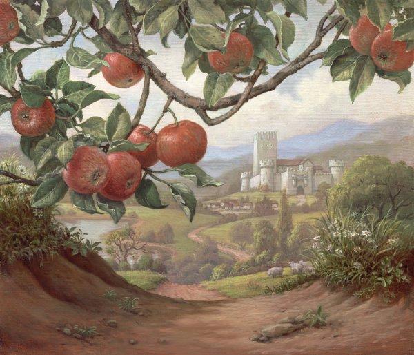 Au Royaume des Pommiers...