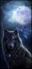 Un Loup Différent...