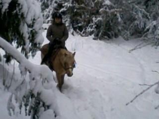 Balade ds la neige ...