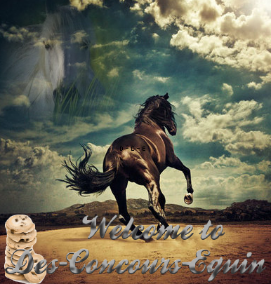 Welcome in Des-Concours-Equin ! :)