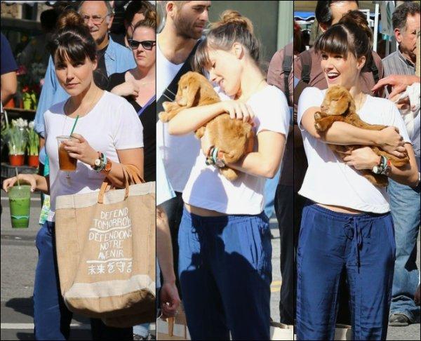 Le 03/02/13: Sophia s'est rendue au marché des fermiers. Je luis met un bof pour sa tenue. + Des photos personnels posté sur twitter et instagram.