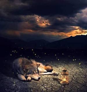 Dans attente de te revoir j'attent ton retour mes tu et partie parmi les étoiles alors ses en attendent le noir de la douce nuit que je vais apercevoir la lumière des étoile qui guide mon chemin et ma route de mes penser qui s'envoleront vers toi