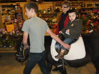 mon fils a cheval
