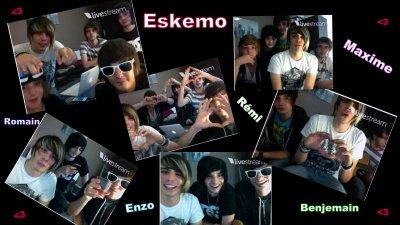 Leurs première twitcam..