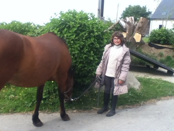 On rammene les chevaux