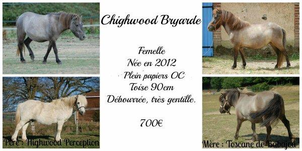 Chighwood Bryarde