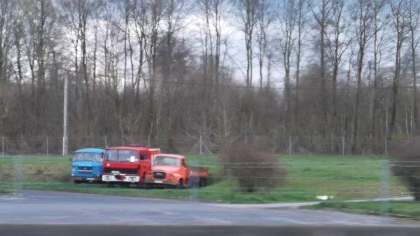 véhicules croisés (266)