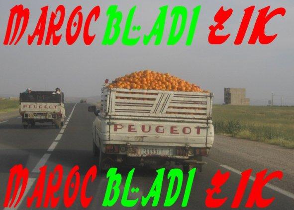 MAROC BLEDI !!