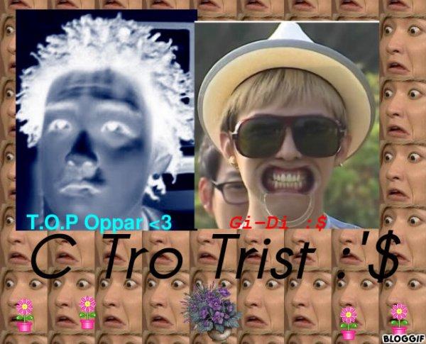 Os n°4 G-Dragon (BigBang) x T.O.P (BigBang) : Pierre Bleue
