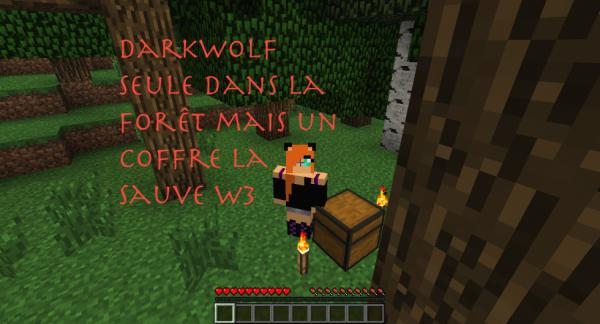 DarkWolf dans une forêt !
