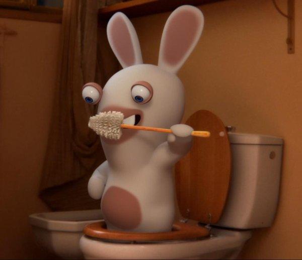 lapins crétin