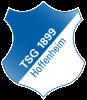 tsg-actu-hoffenheim