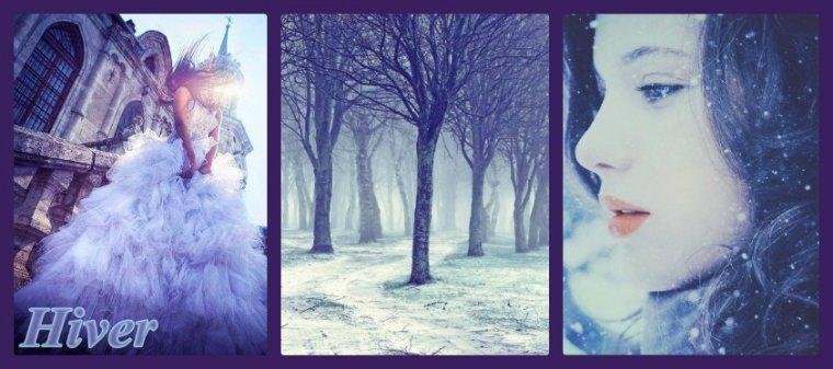 Montages sur le thème de l'hiver