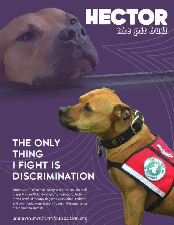 Luttons contre la discrimination !