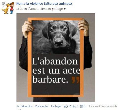 L'ABANDON Est Un Acte BARBARE !