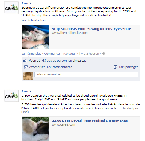 Pétition contre l'expérimentation de la privation sensoriel faite sur les chatons !