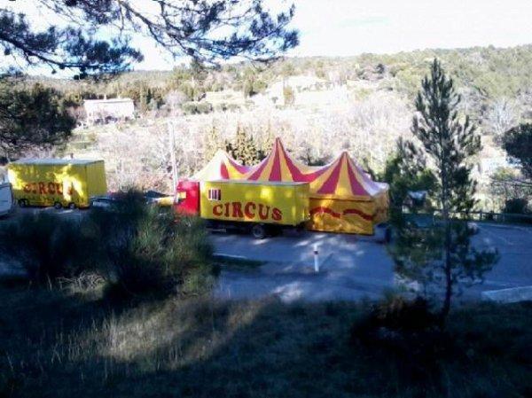 Du nouveau au zoo circus