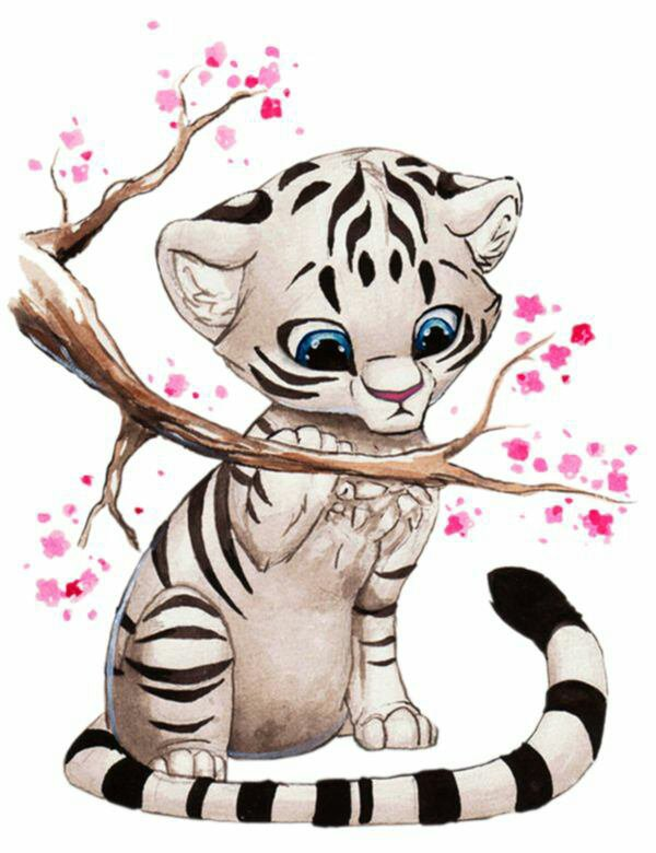 Il est trop kawai se tigre