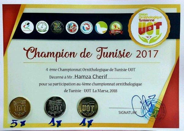 champion de Tunisie 2017 canari de couleurs agate rouge mosaïque et agate jaune mosaïque 4éme Championnat ornithologique, sous l'égide de l'Union Ornithologique Tunisienne