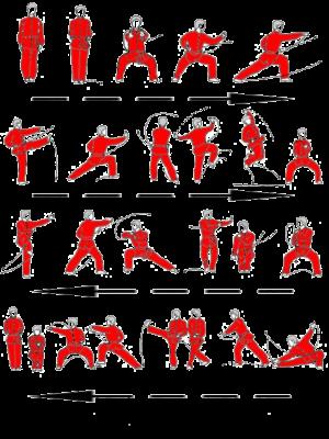 techniques de base kung fu wa7ch eddin