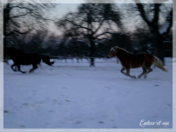 Neige blanche entoure nos coeurs.