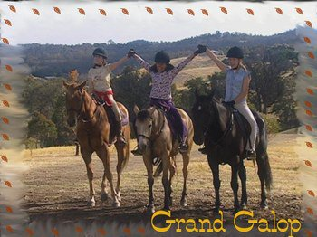 Article 228 :} Grand Galop <3