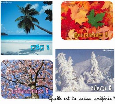 Quelle est votre saison préférée ?