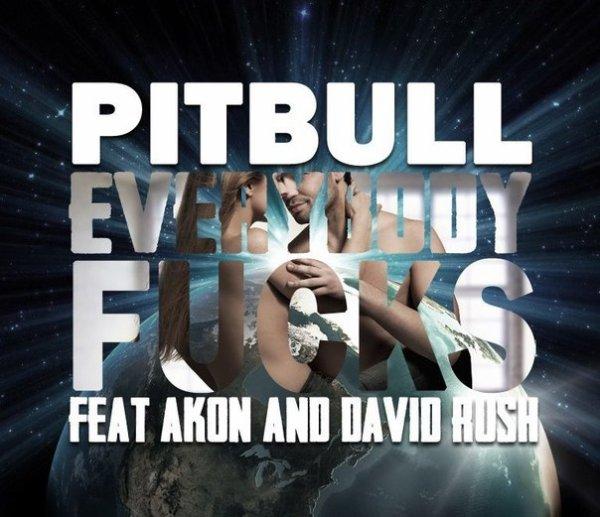 Pitbull feat. Akon & David Rush - Everybody Fucks (2012)