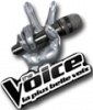 thevoice-music