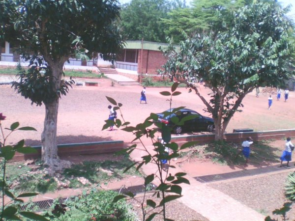 Lycée PIEXII