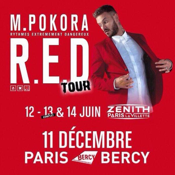 Le concert du 13 juin au zénith de Paris est officiellement complet! Il reste quelques places le 12 et 14 juin. #redtour