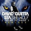 She wolf (falling to pieces) de David Guetta feat.Sia sur Skyrock