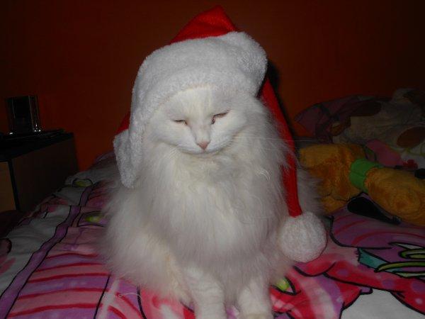 Le Père Noël et la Mère Noël