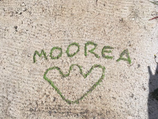 Bienvenue à Moorea