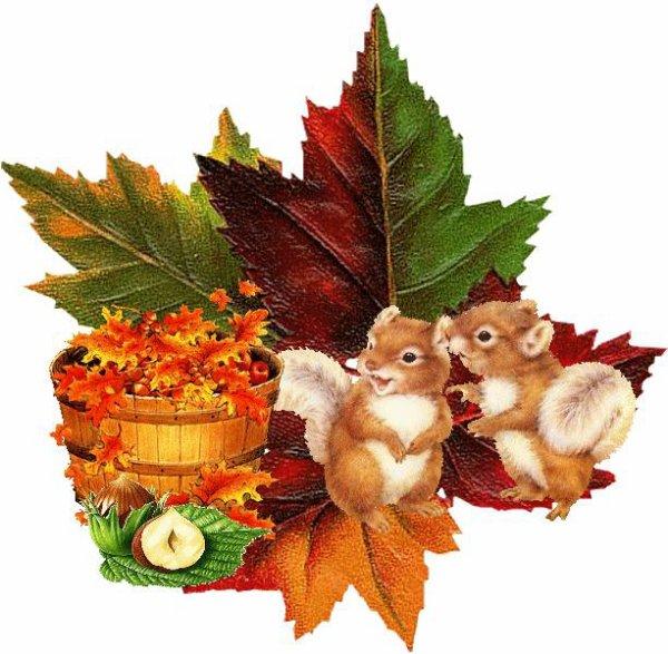 Articles de jossy069 tagg s l 39 automne et ses couleurs joc - L automne et ses couleurs ...