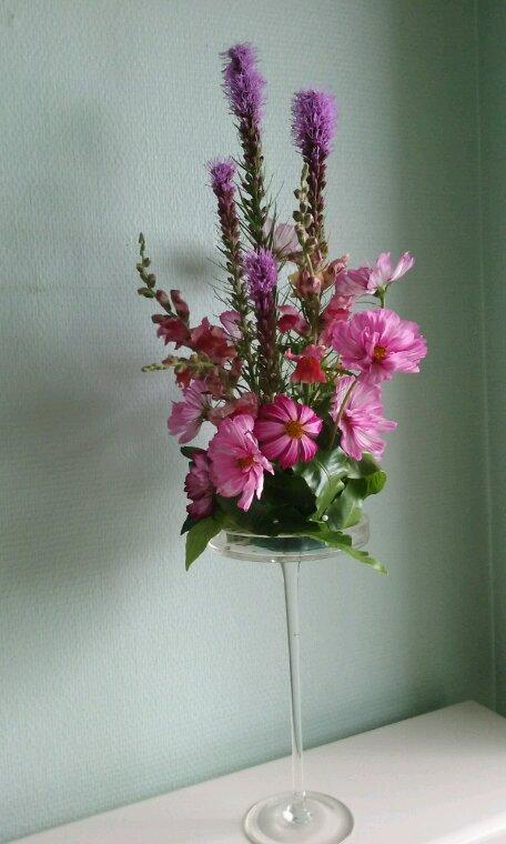 Toujours les fleurs du jardin.