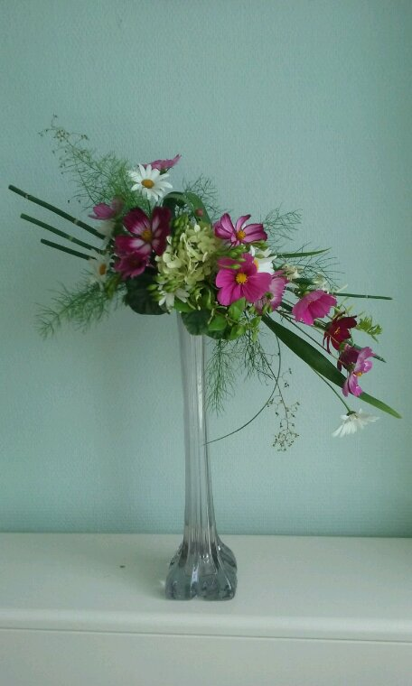 Simples fleurs du jardin.