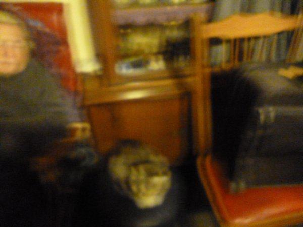 déjà 34 semaine demain que tu es partie mémère - Hommage as mémère une de mais chatte décède