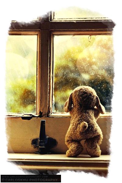 """""""Une larme, c'est la molécule d'un sentiment...""""  Loove-Ciitations"""