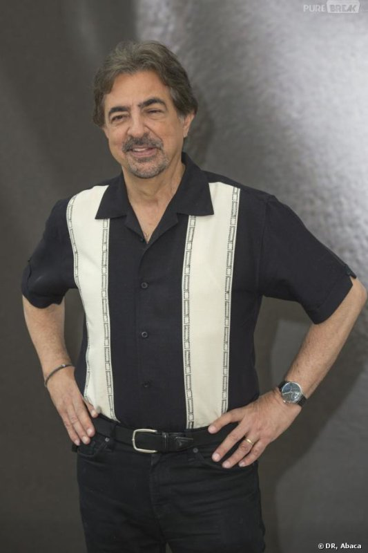 Biographie de Joe Mantegna