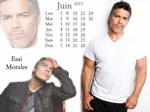Calendrier de Juin 2015