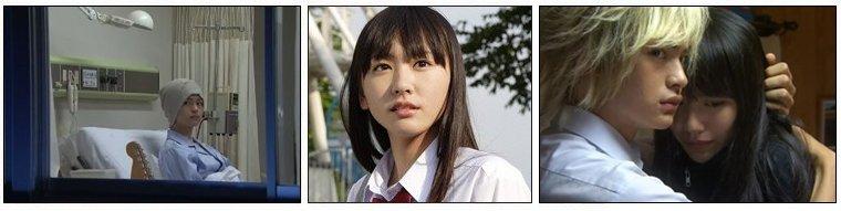 Drama & Film Japonais ❖  Koizora & Koizora - Le Film