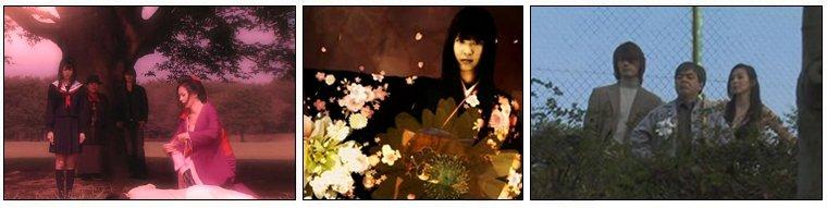 Drama Japonais ❖  Jigoku Shoujo