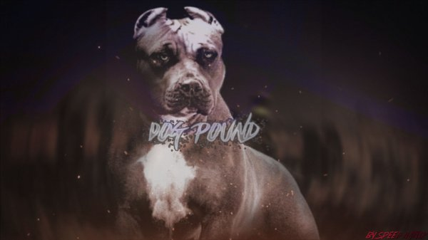 Speed Label NaTiiK Records / Dog Pound x Rick Ross Type Beat Prod. By Speed NaTiiK (2015)