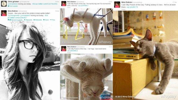 13/04/2013 Nina a twitter : HAHAHA Du Jour.. Raton laveur jouant de la harpe d'arrosage!