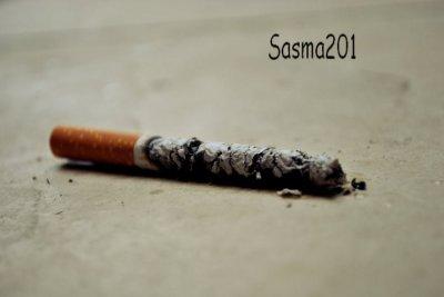 Tabac-Tabou.