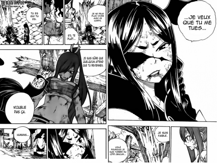chap 388 (fairy tail)