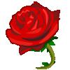 cette rose et pour ma tres chere maman que jaime beaucoup